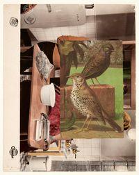 Aviary I by John Stezaker contemporary artwork mixed media