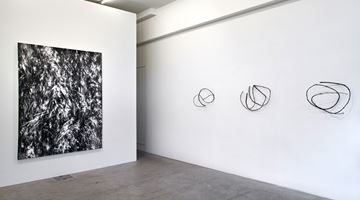 Contemporary art exhibition, Julia Steiner, circular flight at Galerie Urs Meile, Lucerne