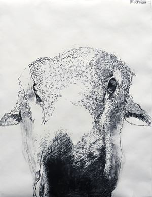 WOOLY (Third) 26 & 27 June by Kristin Hollis contemporary artwork