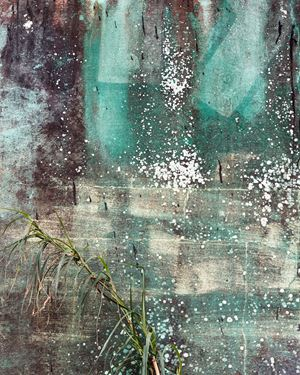 Efflorescence by Anastasia Samoylova contemporary artwork