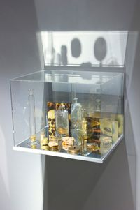 What Colour is the Sacred? (Gold) by Janet Laurence contemporary artwork sculpture
