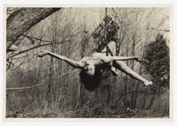 Study for Up to and Including Her Limits by Carolee Schneemann contemporary artwork photography