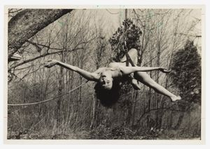 Study for Up to and Including Her Limits by Carolee Schneemann contemporary artwork