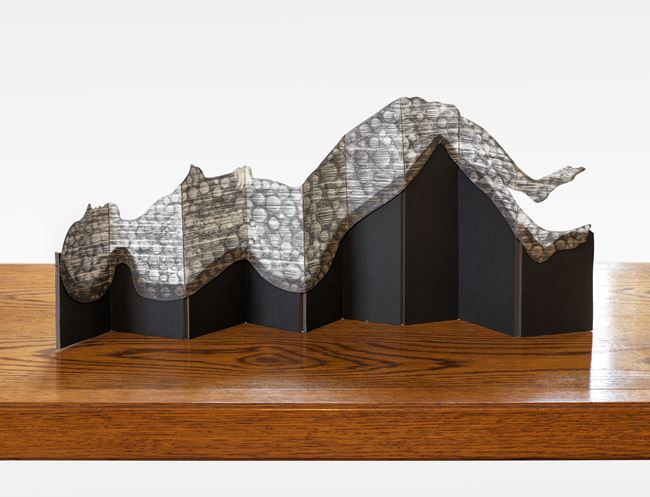 De estado Gaseoso by Sandra Vásquez de la Horra contemporary artwork