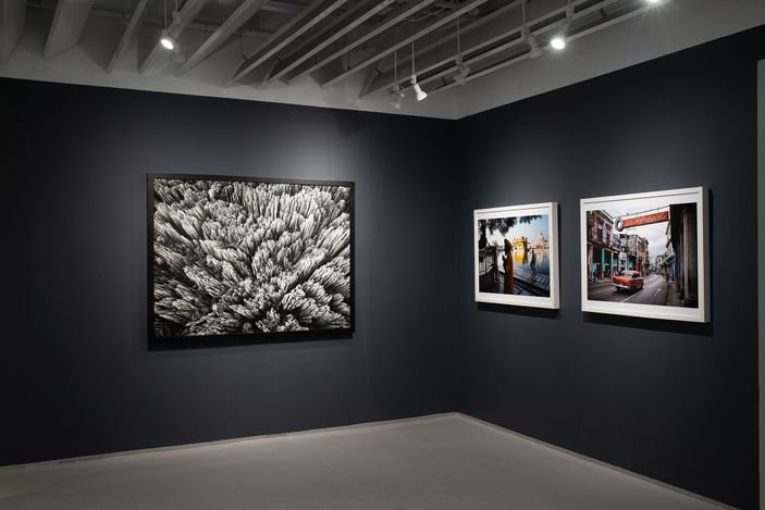 Exhibition view: Group Exhibition,Print / Process / Repeat, Sundaram Tagore Gallery, Chelsea, New York (11 March–17 April 2021). Courtesy Sudaram Tagore Gallery.