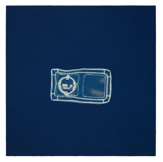 Cyanotype on Saunders Waterford paper by Do Ho Suh contemporary artwork