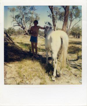 Australia (7) by Sidney Nolan contemporary artwork