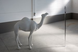 Camel (Albino) Contemplating Needle (Large) by John Baldessari contemporary artwork