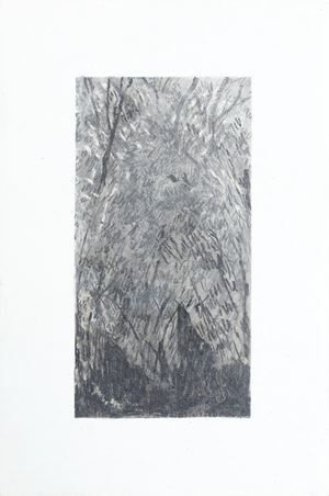 The woods we curl in by Moses Tan contemporary artwork