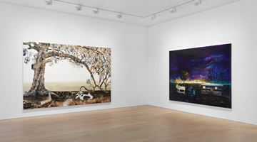 Contemporary art exhibition, William Mackinnon, Strive for the light at Simon Lee Gallery, London