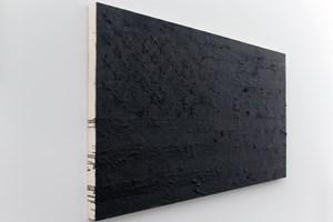 Phoenix Flag by Rubén Ortiz Torres contemporary artwork