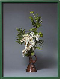 The Suffragette, Blackberry (Rubus fruticosus) by Ann Shelton contemporary artwork photography