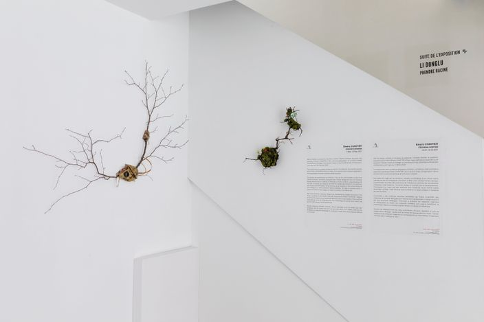 Exhibition view: Émeric Chantier, Internal Chimeras, A2Z Art Gallery, Paris (3 May–26 May 2021). Courtesy A2Z Art Gallery.