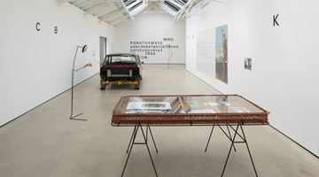 Contemporary art exhibition, Simon Starling, A-A', B-B' at The Modern Institute, Glasgow