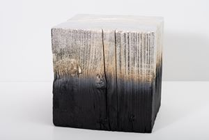 Alchemy (Shou Sugi Ban) Cube 3.19.12.8 by Miya Ando contemporary artwork