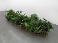 Tubo da mettere tra i fiori (Tube to Place Among Flowers) by Luciano Fabro contemporary artwork installation