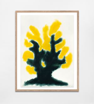 Gorse by David Nash contemporary artwork