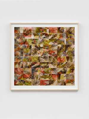 Nov 89, No. 12 by Roy Colmer contemporary artwork works on paper, photography, mixed media