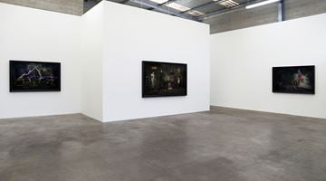 Contemporary art exhibition, Heather Straka, Dissected Parlour at Jonathan Smart Gallery, Christchurch