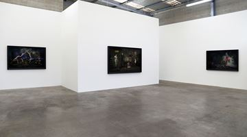 Contemporary art exhibition, Heather Straka, Dissected Parlour at Jonathan Smart Gallery, Christchurch, New Zealand