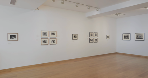Exhibition view: Constantin Brancusi, Henry Moore, Auguste Rodin,Through the Sculptor's Lens, Waddington Custot, London (22 May–11 July 2015). Courtesy Waddington Custot, London.