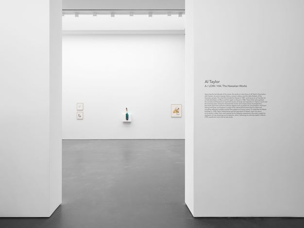 Exhibition view: Al Taylor, A / LOW / HA, The Hawaiian Works, David Zwirner, 537 West 20th Street, New York (5 March–31 July 2020). Courtesy David Zwirner.