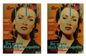 Elle Flamand fevrier 1993 by Sylvie Fleury contemporary artwork