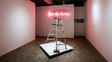 Contemporary art exhibition, David Shrigley, Jiro Takamatsu, Brick, Stepladder, and Neon at Yumiko Chiba Associates, Tokyo