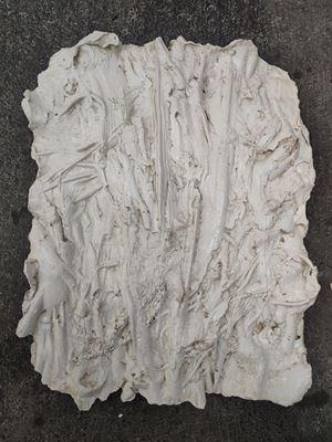 deep skin VII by Julia Steiner contemporary artwork