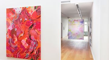 Contemporary art exhibition, Alice Browne, Camouflage at FLATLAND, Amsterdam