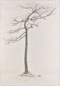 The Sacrifice Tree - Sequel by Shi Jin-Hua contemporary artwork works on paper, drawing