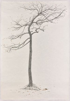 The Sacrifice Tree - Sequel by Shi Jin-Hua contemporary artwork