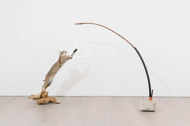 Multis utile bellum by Gabriel Rico contemporary artwork