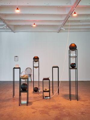 garden for fanon by Nolan Oswald Dennis contemporary artwork sculpture
