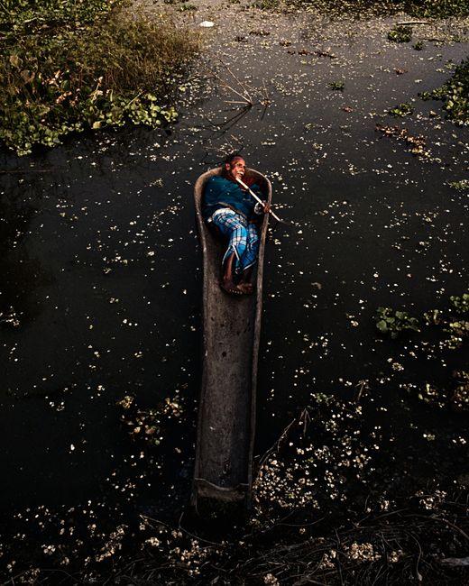 Where the Birds Never Sing by Soumya Sankar Bose contemporary artwork