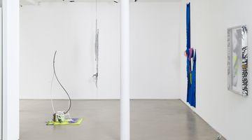 Contemporary art exhibition, David Douard, 0'LULABY at Galerie Chantal Crousel, Paris, France