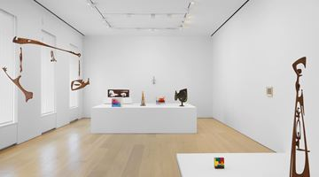 Contemporary art exhibition, Leo Amino, The Visible and the Invisible at David Zwirner, 20th Street, New York