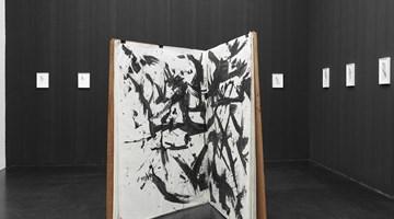 Contemporary art exhibition, Lutz Bacher, Open the Kimono at Galerie Buchholz, Cologne