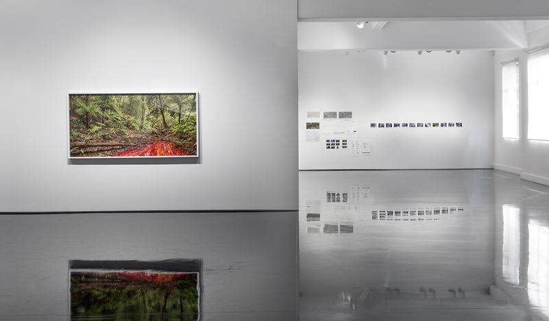 Exhibition view: Rosemary Laing, Buddens, Tolarno Galleries, Melbourne (22 March–28 April 2018). Courtesy Tolarno Galleries. Photo: Andrew Curtis.