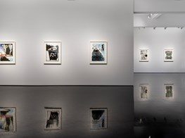 """Benjamin Armstrong<br><em>Invisible Stories: Meditations on Port Essington</em><br><span class=""""oc-gallery"""">Tolarno Galleries</span>"""