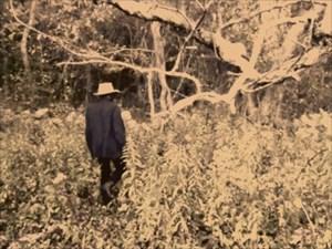 Dancer in the Woods by Samson Kambalu contemporary artwork