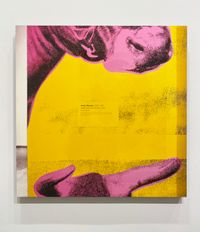 Pink and Yellow and Black II (Green Coca Cola Bottles) from On a Wall, On a Cow, In a Book, In the Mail by Louise Lawler contemporary artwork photography