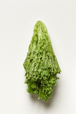 Lettuce (Kitchen Pieces) by Karin Sander contemporary artwork