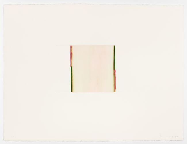 Sap Green / Opera Rose by Callum Innes contemporary artwork