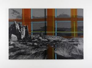 Desire Lines by Caragh Thuring contemporary artwork