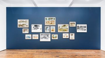 Contemporary art exhibition, Sue Williamson, Distant Visions: Postcards from Africa at Goodman Gallery, Cape Town, South Africa
