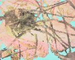 Petal by Sojung Lee contemporary artwork 2