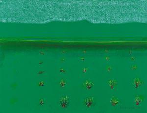 Bushes by Richard Artschwager contemporary artwork