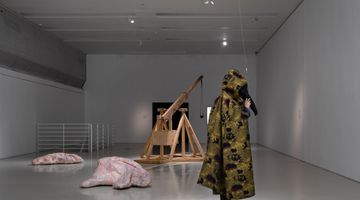 Contemporary art exhibition, Candice Lin, Pigs and Poison at Guangdong Times Museum, Guangzhou