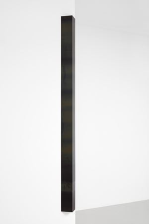 Stereograph #26 by Liz Deschenes contemporary artwork